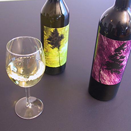 étiquettes vin, chasselas, syrah