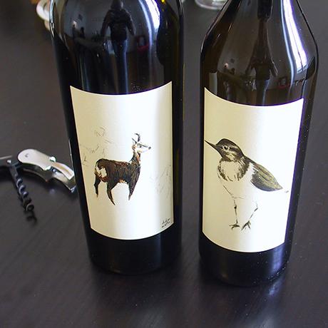 didier martin, illustration, étiquettes vin, chamois, chevalier guignette, millésime